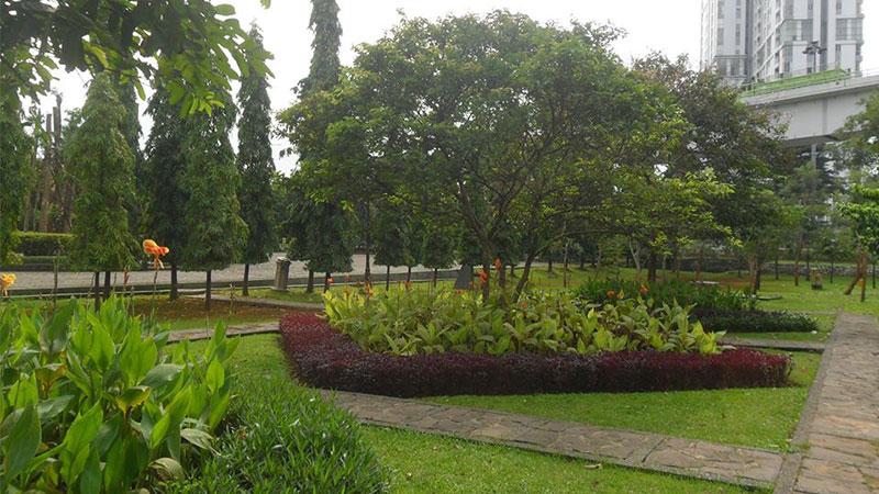 Taman-Cattelya